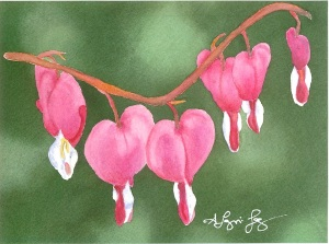 05.14.13 Bleeding Hearts III